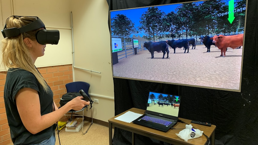 A blonde woman with a black headset on in front of a screen with cattle pictured
