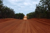 A dusty red road leads through the bush.
