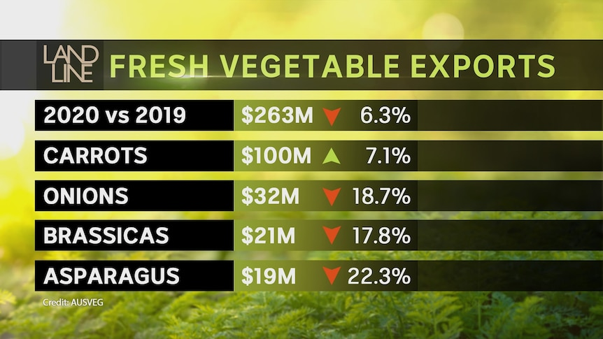 a graph showing exports of fresh vegetables in 2020