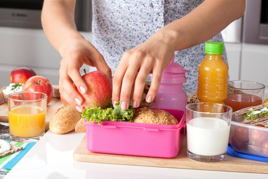 Generic female hands packing school lunch