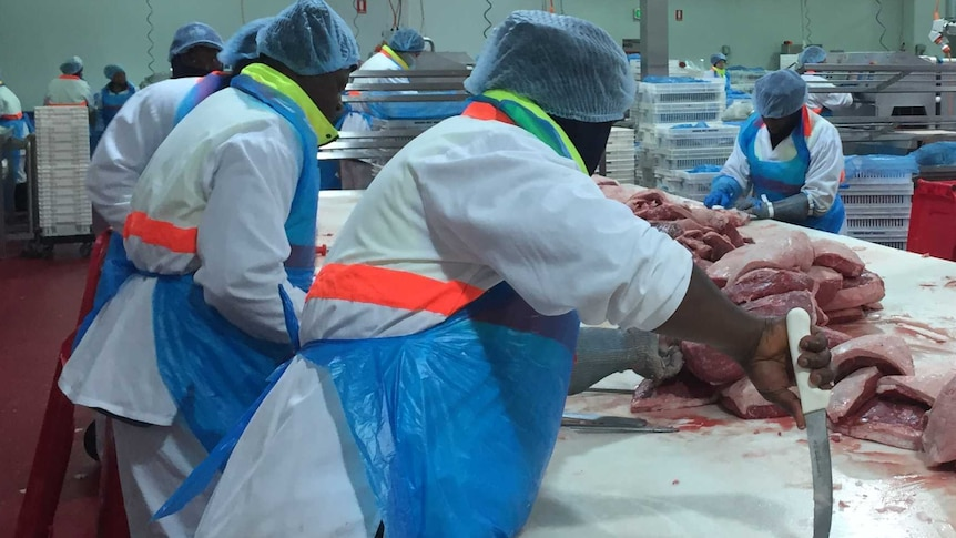 Meat workers wearing cloth hats cut beef and pork