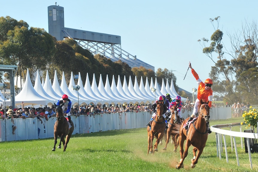 Horses on the track with a big crowd on the sidelines. Lots of colour.