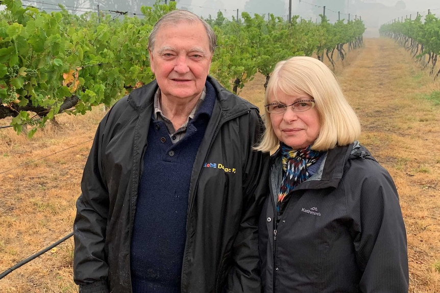 man and woman standing in their vineyard.
