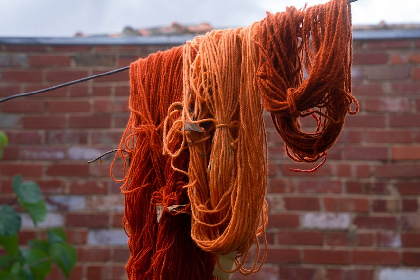 Three lots of orange wool of various shades are seen hanging on a single string in what appears to be a backyard.