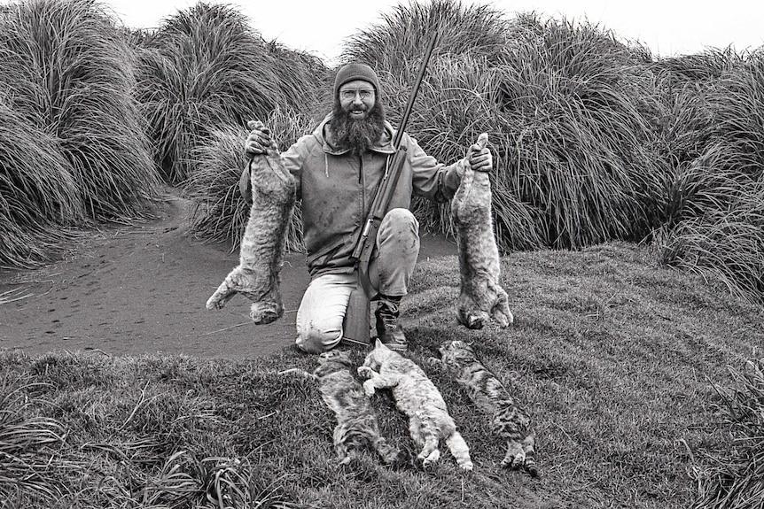 Feral cat cull on Macquarie Island