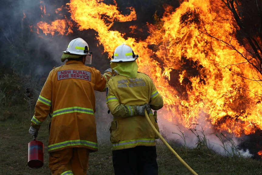 Firefighters battling bushfires in Angourie.