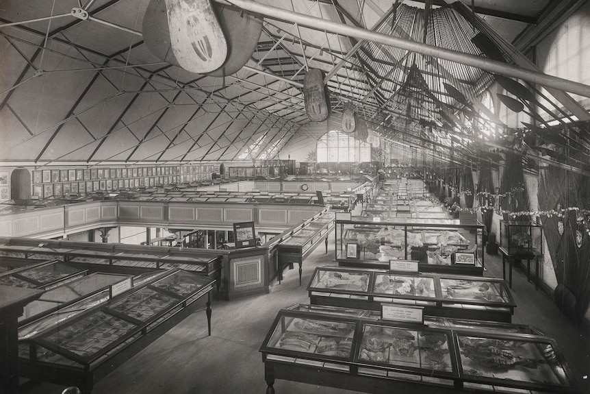 Black and white photo of the Old Musuem.