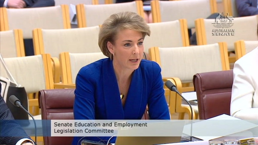 Michaelia Cash says leak happened without her knowledge