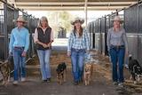 Fenella Neilson, Jane Eveleigh, Cassie Clarke and Margo Hogan walk towards the camera, leading their dogs.