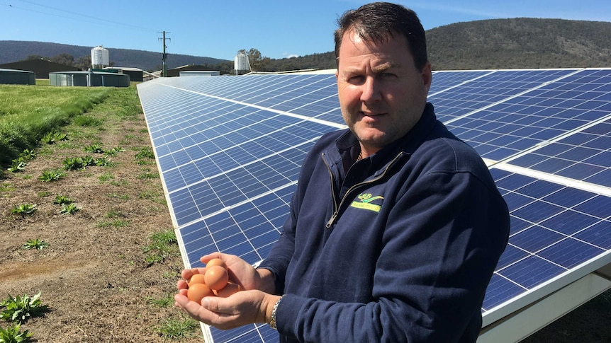 A man holding eggs standing in front of solar panels.