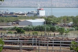 Live export ban sought by meatworkers and lobbyists
