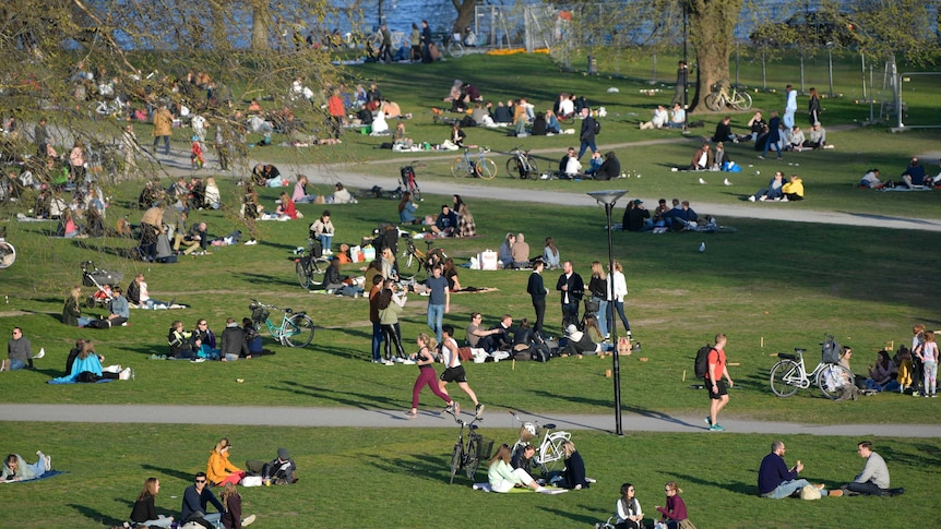 People gather in a park in Stockholm, Sweden, during the coronavirus pandemic.