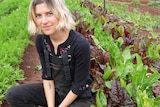 A woman in black overalls and a long sleeved top crouches in a garden with brightly coloured herbs and spinach.