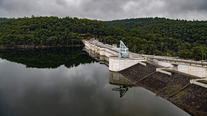The dam wall sits between a line of water below and a line of trees above.