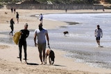 Surfers in black wetsuits and people wearing masks walk down the beach at Anglesea, many are walking their dogs.