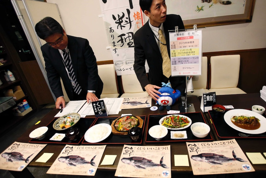 Staff members of Ministry of Economy, Trade and Industry prepare for whale meat tasting during a promotion at a restaurant.