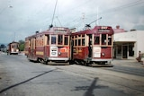 Two trams parked side by side at the Payneham terminus in Adelaide during the 1950s