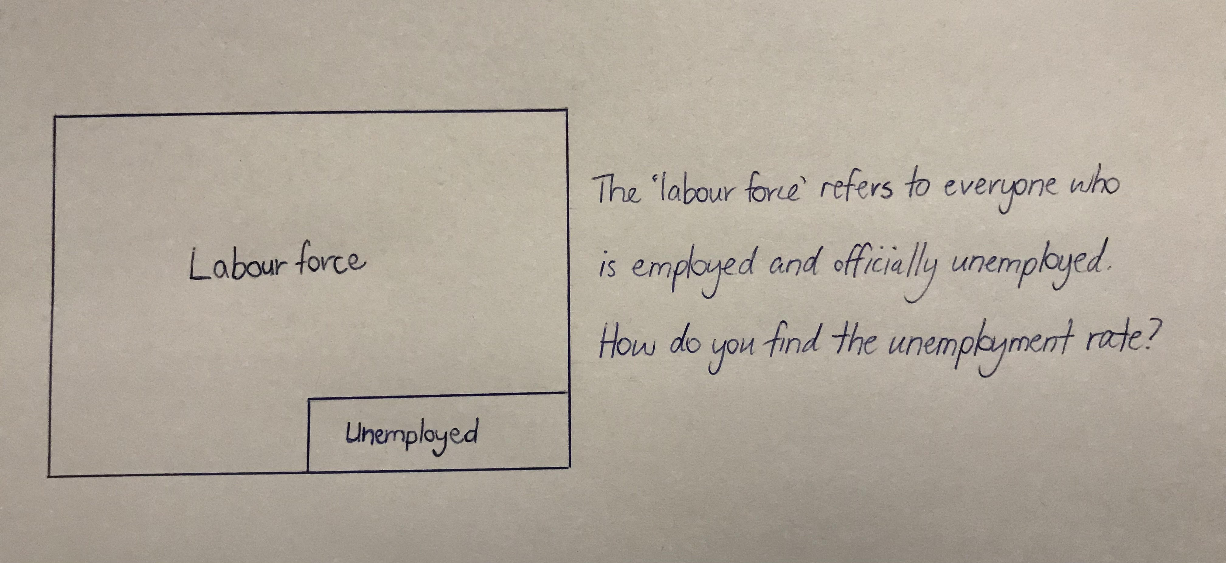 labour force rectangles