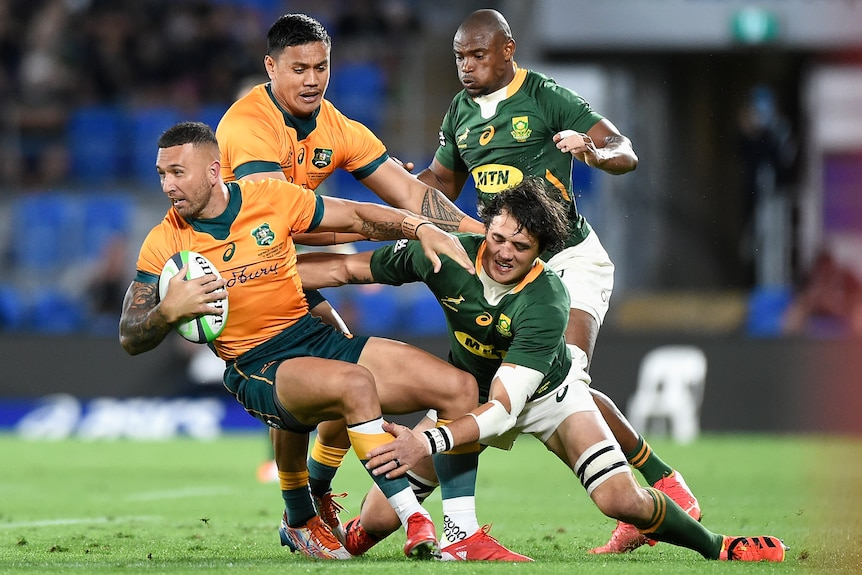 A Wallabies player holds the ball as he is tackled by a Springboks opponent.