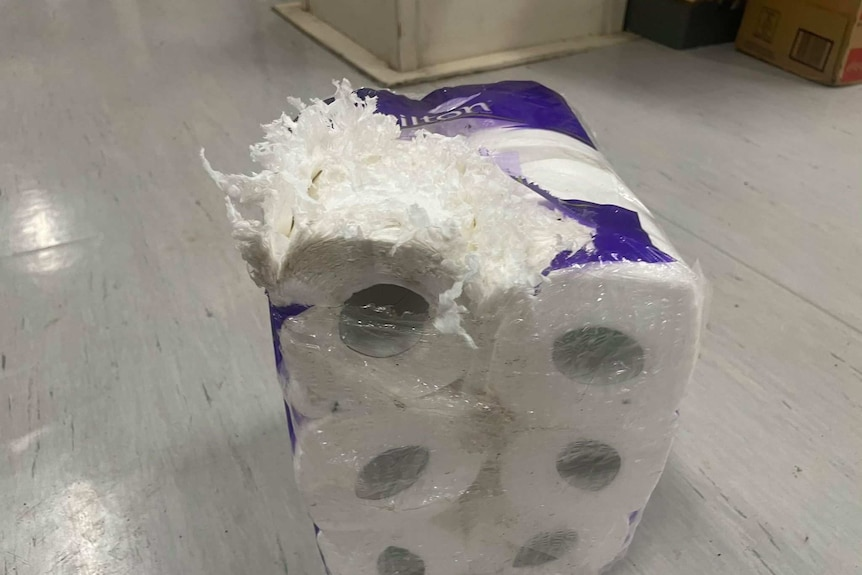 A packet of toilet paper is shredded open on one side with shredded paper pouring out.