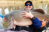 A lady smiles at the camera as she holds a giant fish.