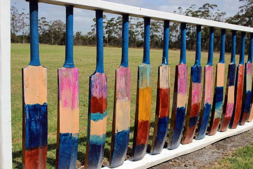 Cricket bat fence
