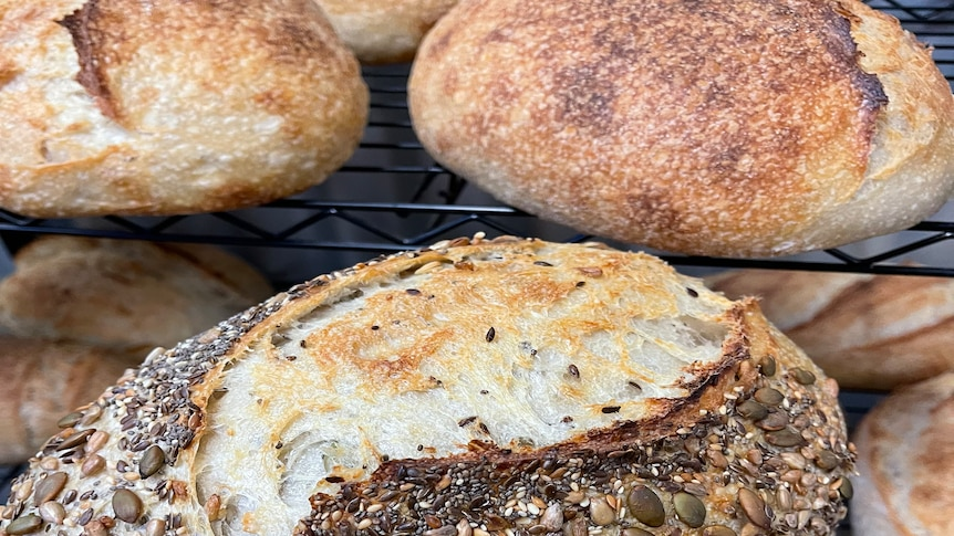 A close up image of a loaf of bread with seeds on top
