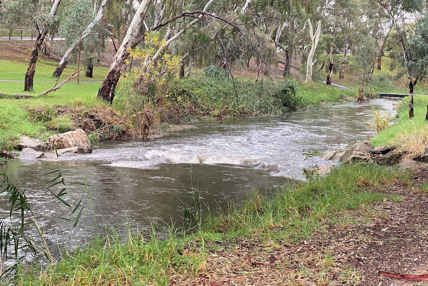 Water flowing through the River Torrens in Adelaide