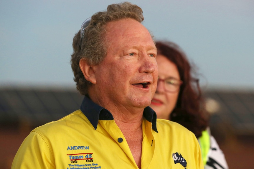 A grey-haired Andrew Forrest in a bright yellow work shirt speaks with a mine site behind him.