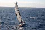 Super maxi Wild Thing at sea