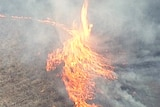 A large flame jumps into the air in aerial footage of a grass fire.