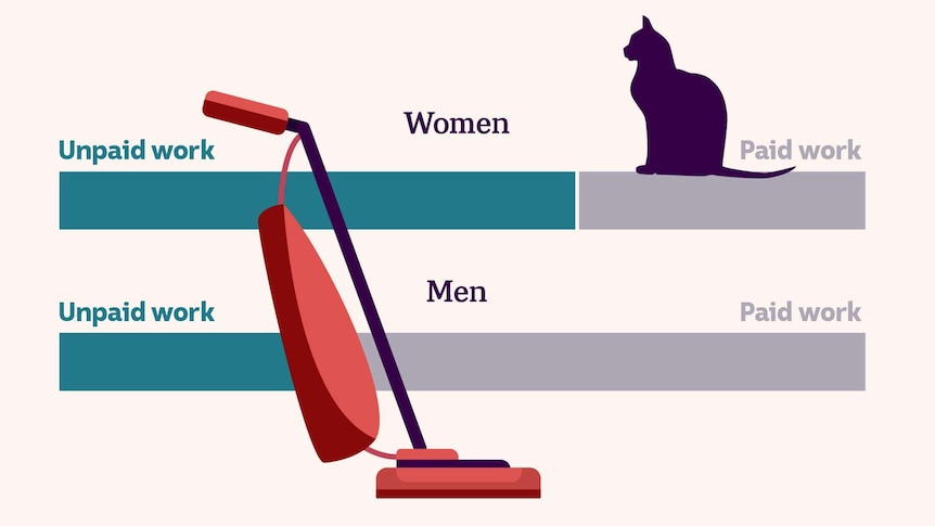 A custom image showing some charts comparing men and women's unpaid labour with a cat and vacuum cleaner on top
