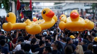 A crowd of protesters holding aloft yellow inflatable rubber ducks.