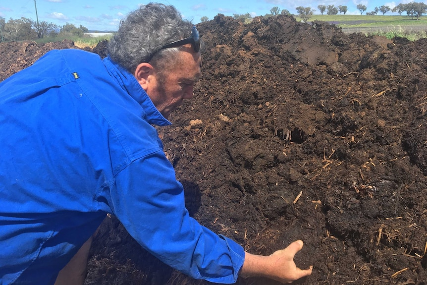 A man in a blue shirt digging his hands into compost