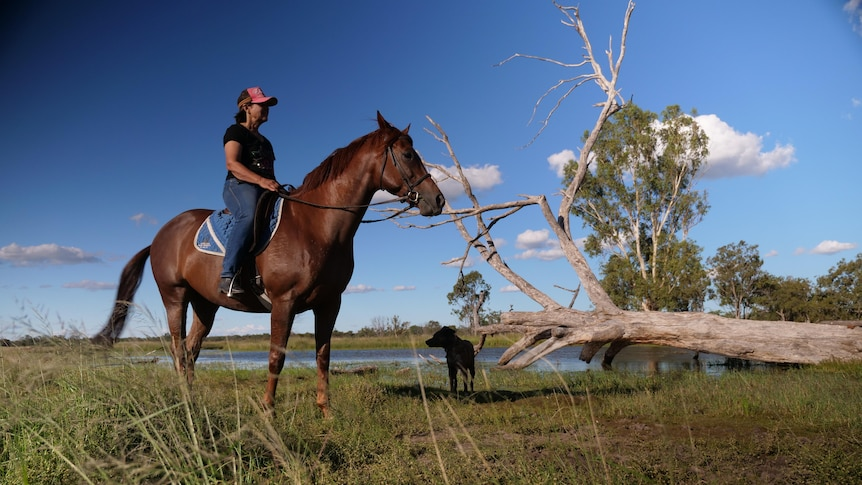 A grazier in Roma is sitting on her horse in a green paddock