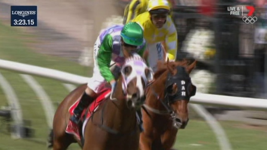 Michelle Payne becomes the first female jockey to win the Melbourne Cup