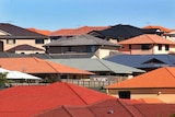 A new housing estate sits on the outskirts of Brisbane in 2005.