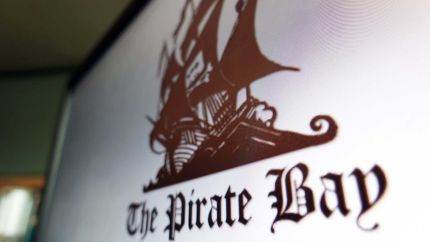 The Government's decision to block Pirate Bay explained