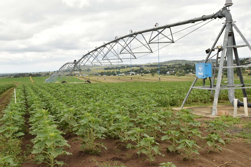 A watering system over a farm.