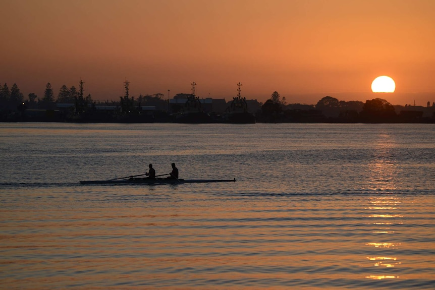 Two rowers scull in front of the rising sun at Throsby Creek in Newcastle