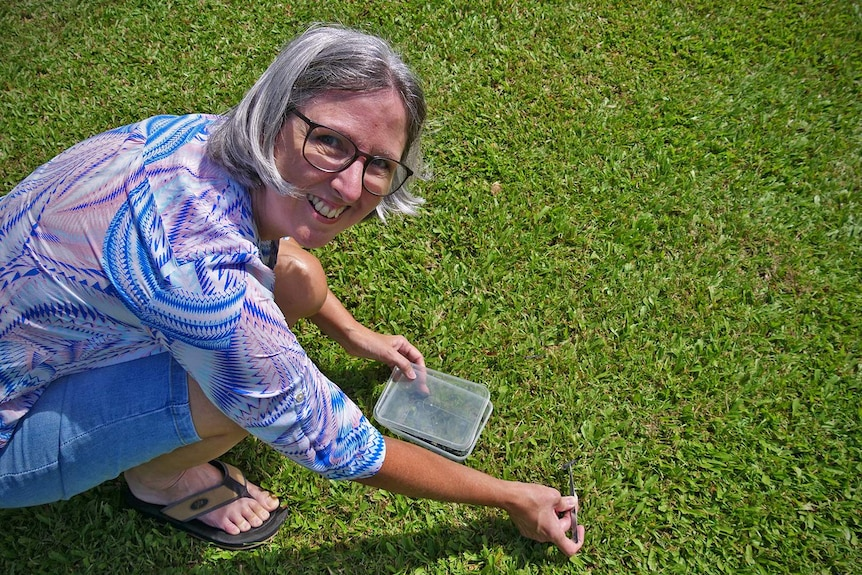 Tamika Savorgnan collects cane ash from the lawn with a pair of tweezers