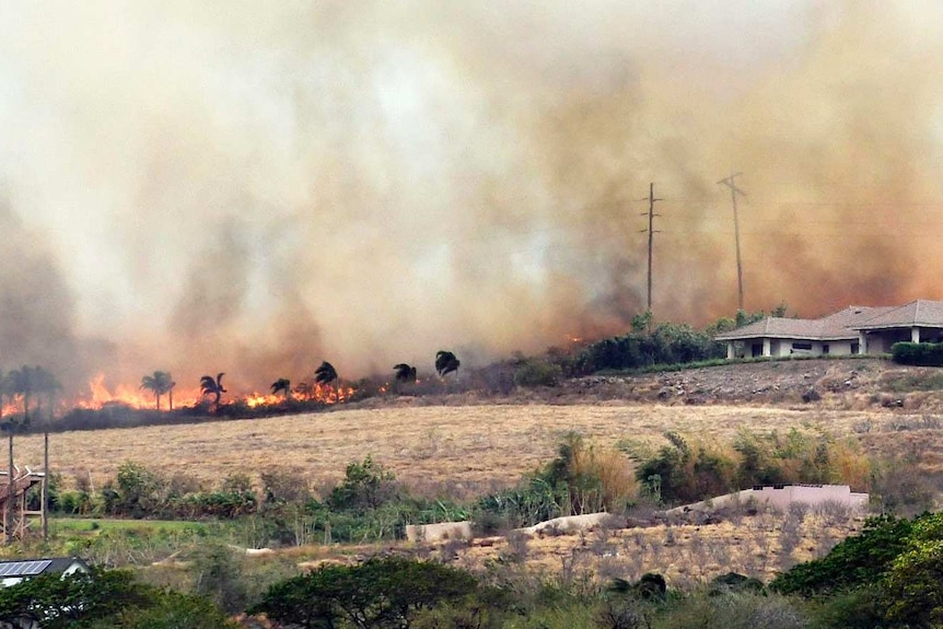 Windswept flames and smoke rush toward a pair of luxury homes.
