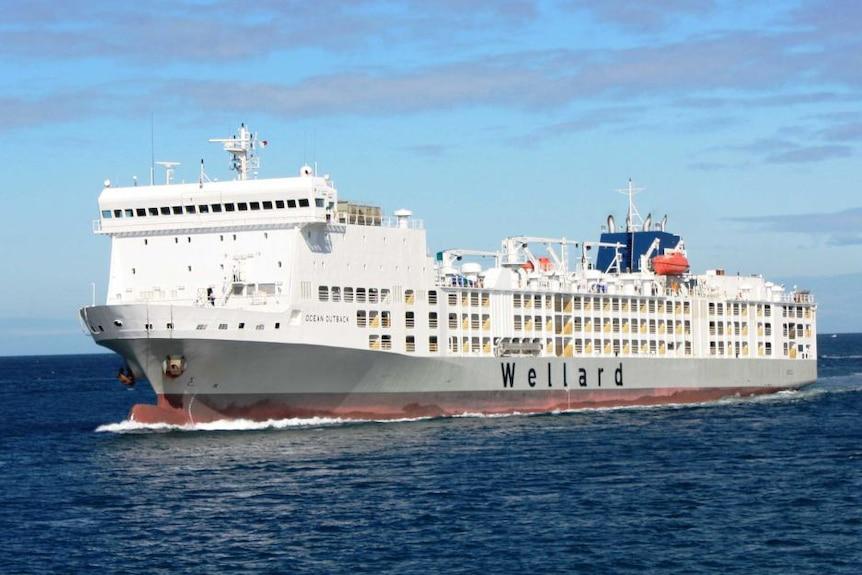 MV Ocean Outback