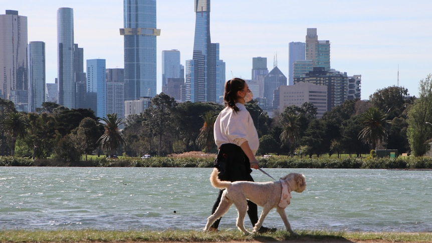 A woman walks her dog around Albert Park Lake.