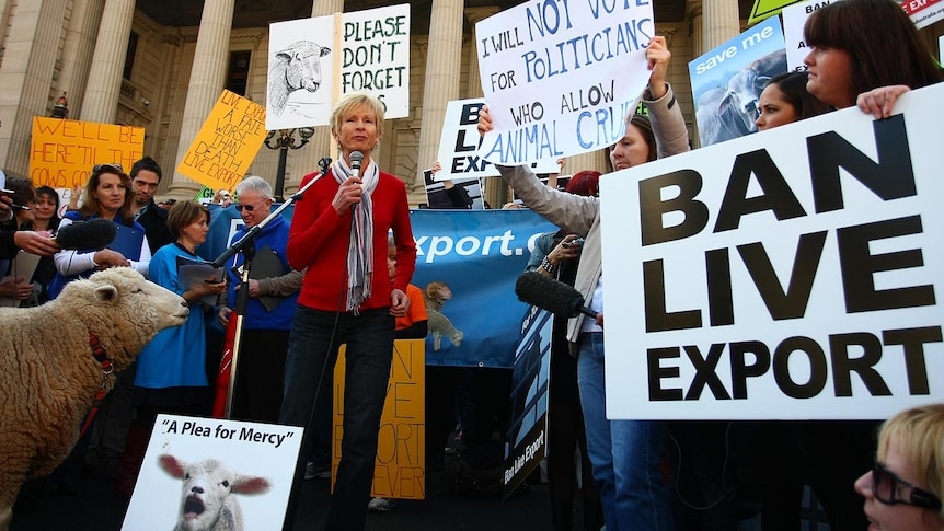Lyn White addresses a live animal export trade rally outside the Victorian Parliament