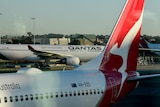 Several planes, all showing the Qantas branding