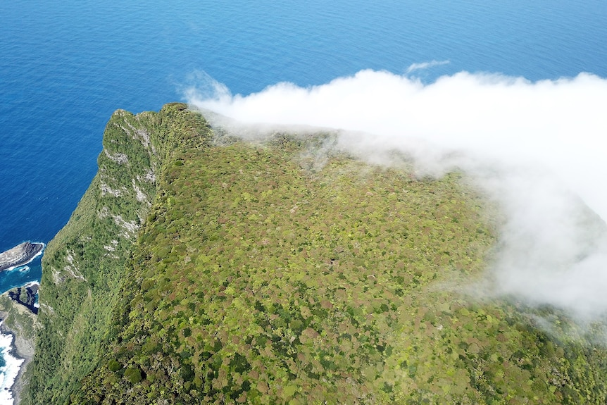 Clouds over an island mountain, covered in forest.