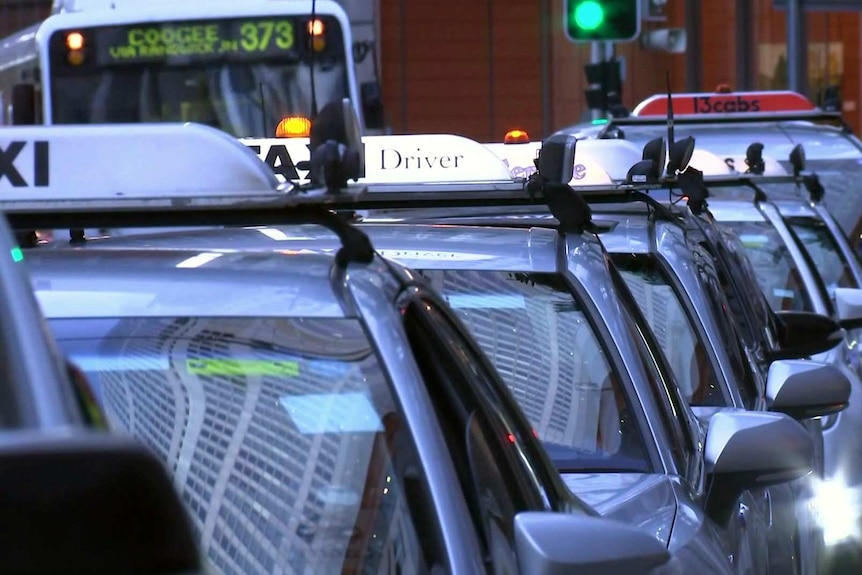 A line of silver taxis in the city.