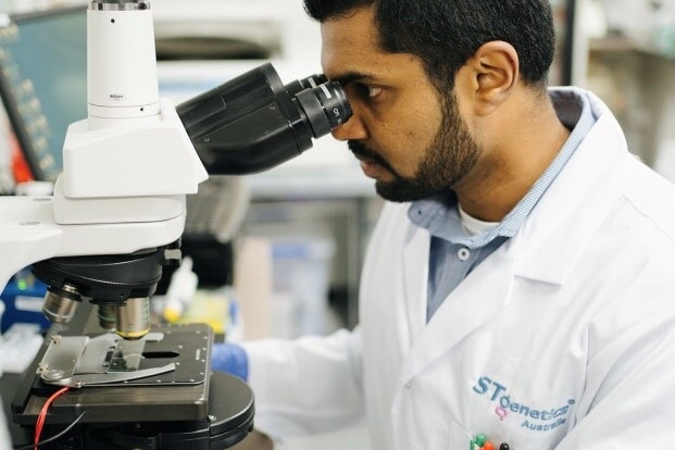 A scientist in a lab looks through a microscope
