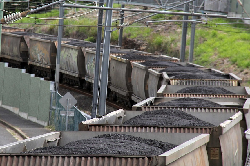 Coal is carried in train cars